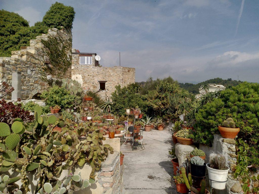Un giardino fra i ruderi